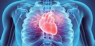 جراح قلب و عروق