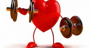 اثرات ورزش برقلب