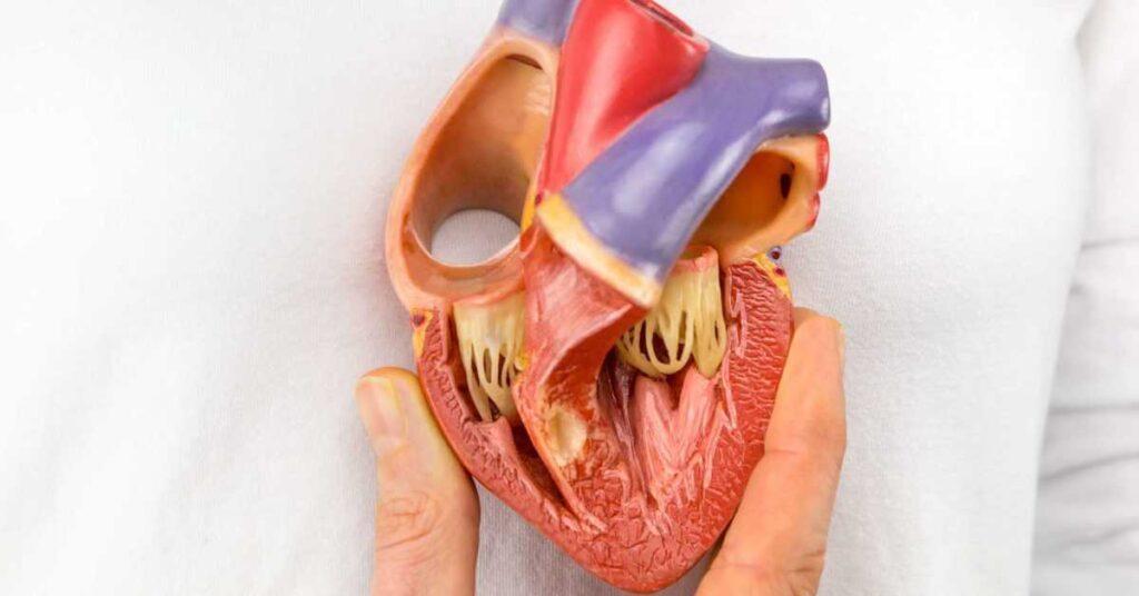 علائم دکستروکاردی یا قلب سمت راست