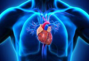 دکستروکاردی یا قلب سمت راست